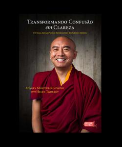 Transformando confusão em clareza: Um guia para as práticas fundamentais do budismo tibetano - Editora Lucida Letra
